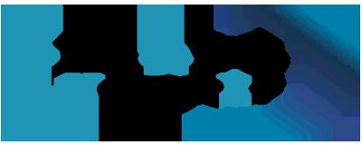 Smart Networks logo