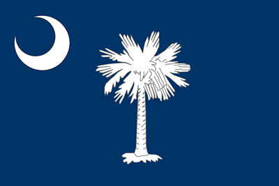 South Carolina state flag.